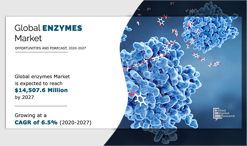 enzymes-market
