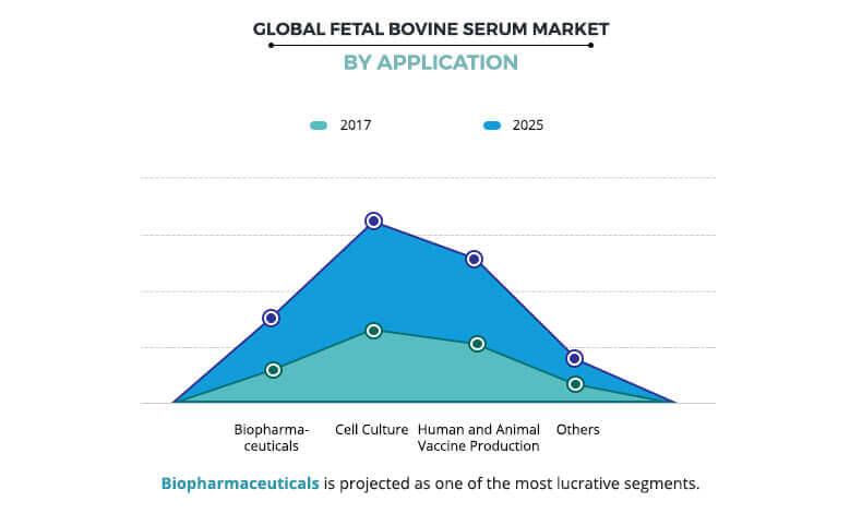 Fetal Bovine Serum Market by Application