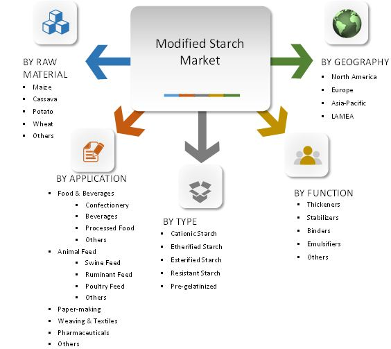 Modified Starch Market Segment review